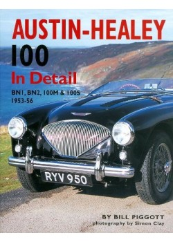 AUSTIN HEALEY 100 IN DETAIL